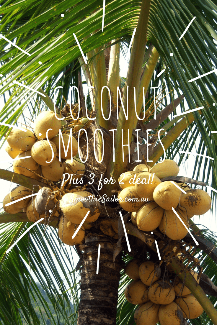 coconut-oil-smoothies | Smoothiesailor.com.au