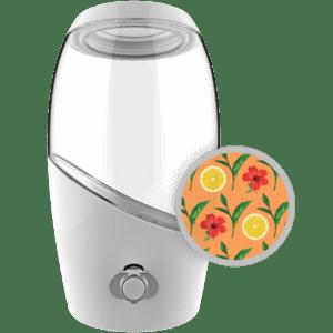 Mortier-Pilon-Kombucha-brewing-jar