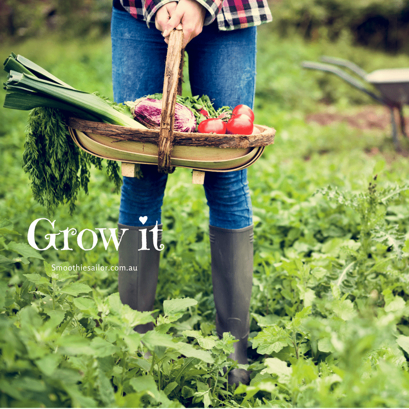 grow-your-own-vegetables-fruit-plants-for-smoothies