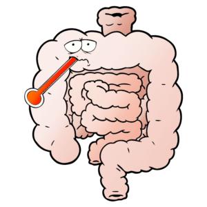 gut-health-microbiome-australia