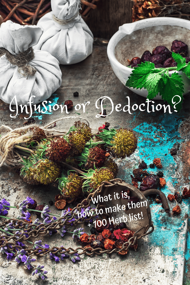 herbal-Infusion-Dedoction-how-to