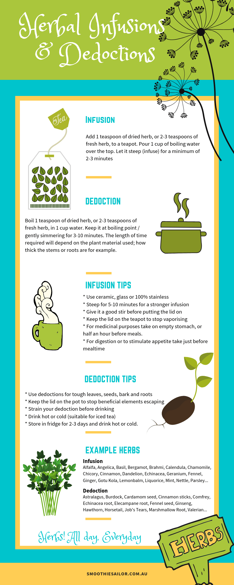 infogram-herbal-infusion-dedoctions-how-to-herbs