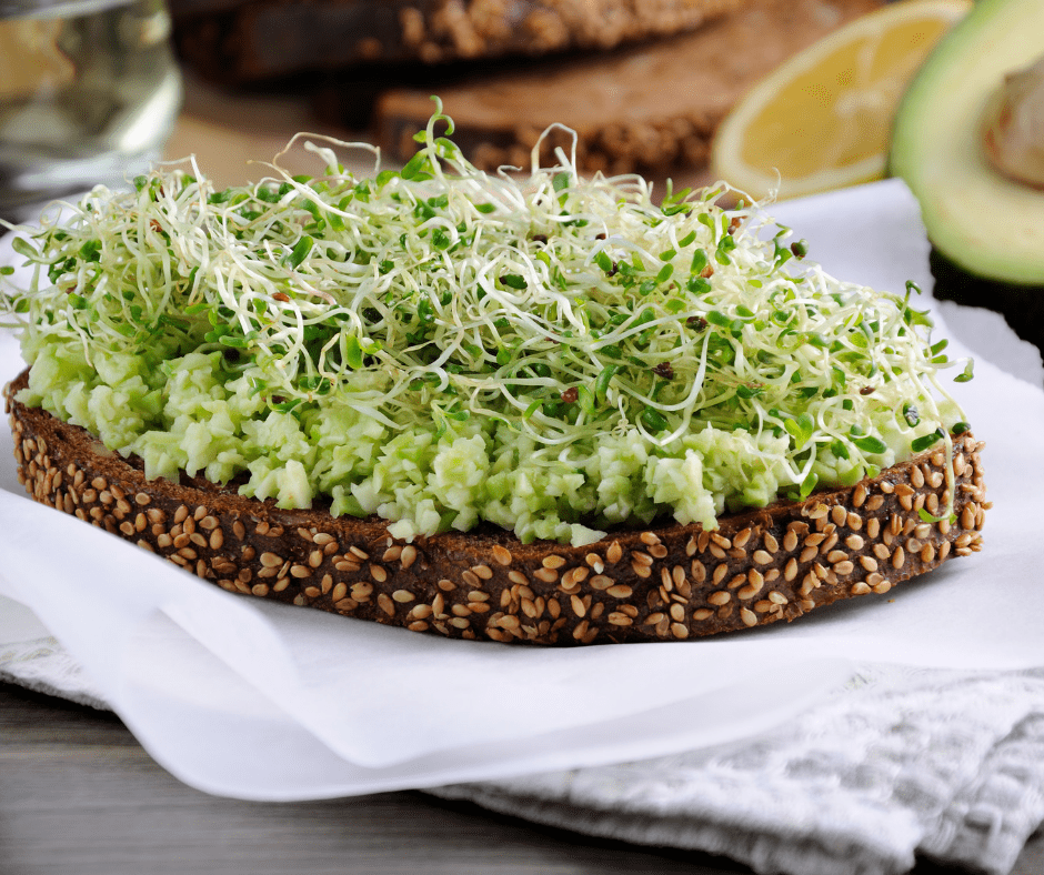 fenugreek-sprouted-seed-microgreen-high-protein